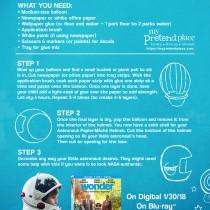 Helmet Instructions