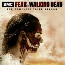 Walking_Dead_800x800_R1