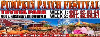 PumpkinPatch_600
