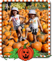 pumpkinpatch_300