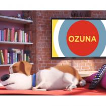 Ozuna Video Image